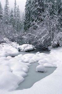 snowycreek